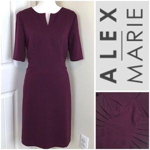 Alex Marie Sheath Burgundy Dress Sz 12